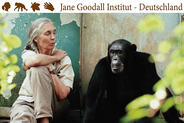 Jane Goodall in Deutschland